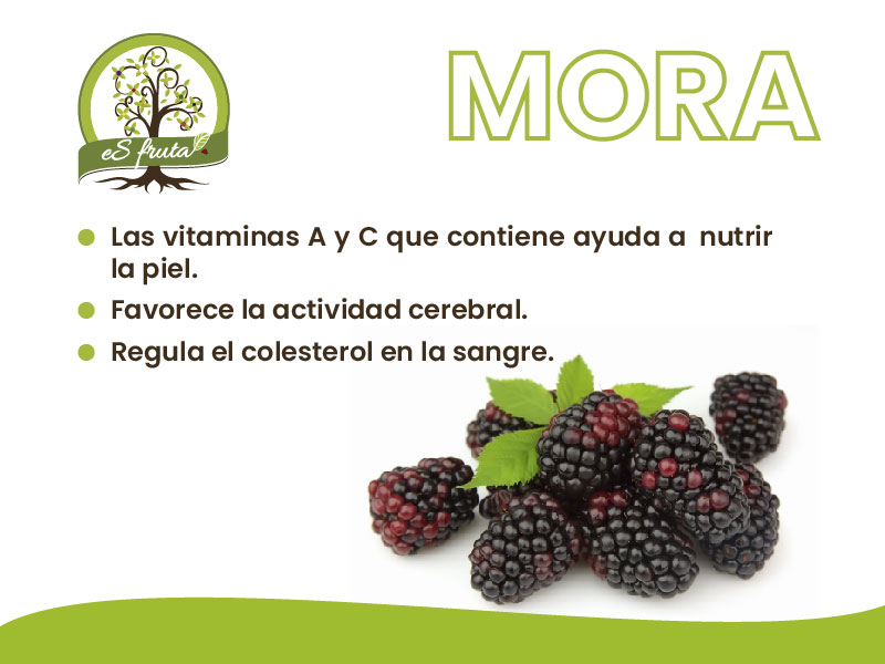 Beneficios de la Mora